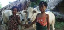 Myanmar Classics  10 days