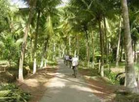 Biking Tour: Mekong (2 days)