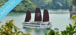 Halong Bay Cruise on Treasure Junk (1 night)
