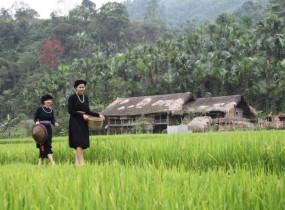 7 Tage abgelegenes Nordvietnam über Bac Ha und Ba Be