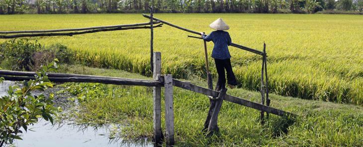 Mekong Waterways   Saigon to Phu Quoc  2 days