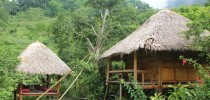 Cycling Pu Luong nature reserve  3 days      4