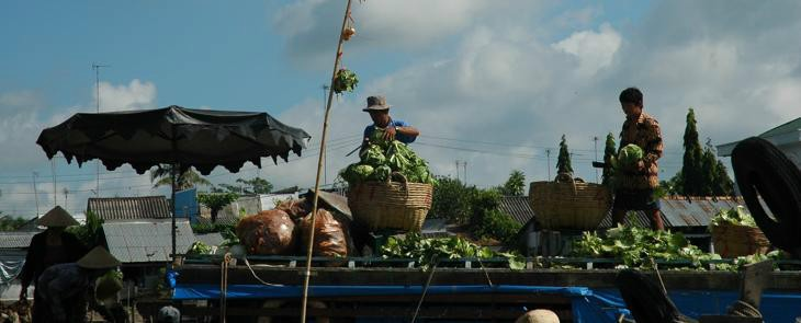Mekong Full Day Tours  1 day