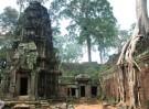 Ta Prohm – Preah Dak – Banteay Srei
