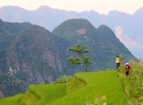 Vietnam Northern Exposure (7 days)