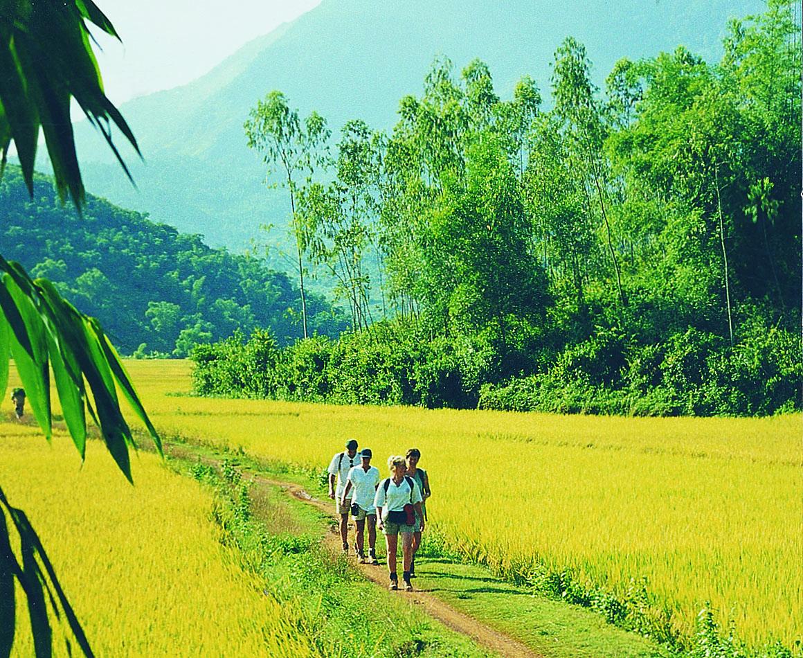 Pu Luong Nature Reserve, A hidden gem