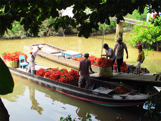 Image result for mekong ecolodge