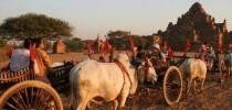 Myanmar Highlights  12 days 2