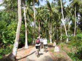 Biking Tour: Mekong (3 days)