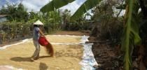 Mekong Exploration  2 days 3