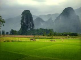 Nature Reserve of Ngoc Son Ngo Luong (2 days)