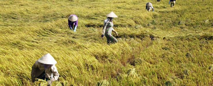 Mekong Exploration  2 days 2