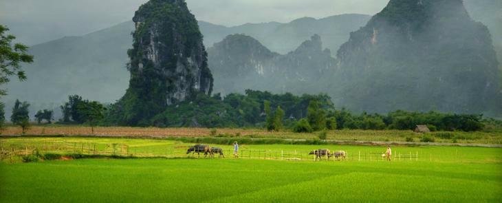 Nature Reserve of Ngoc Son Ngo Luong  2 days    4