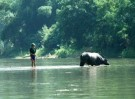 Hanoi – Ba Be national park